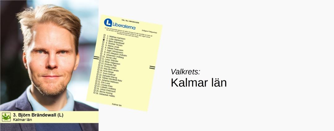 Björn Brändewall (L) i Kalmar läns valkrets