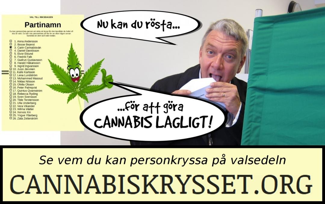 Nu kan du rösta för att göra cannabis lagligt. Gå till Cannabiskrysset.org och se vem du kan personkryssa