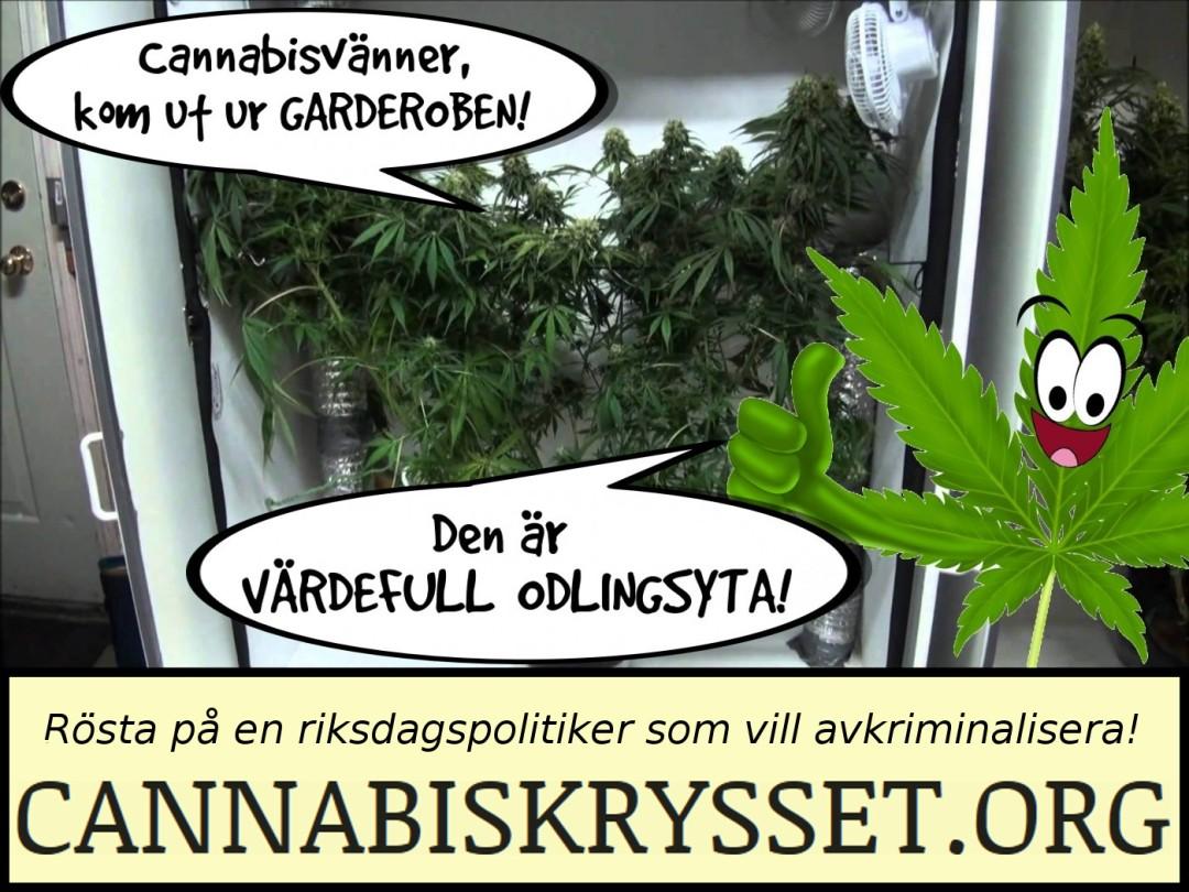 Cannabisvänner, kom ut ur garderoben! Den är värdefull odlingsyta. Rösta på en politiker som vill avkriminalisera!