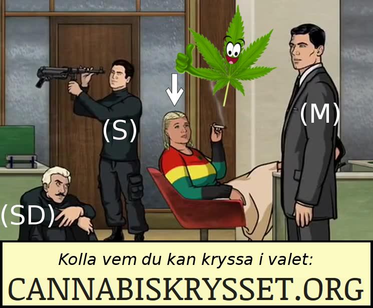 Kolla vem du kan kryssa i valet - Cannabiskrysset.org