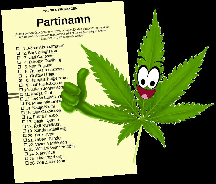 Riksdagsvalsedel med (den påhittade) kandidaten Hampus Holgersson kryssad