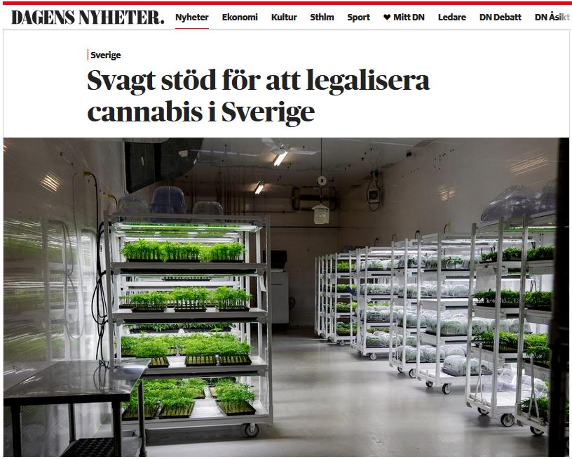 DN-artikel: Svagt stöd för att legalisera cannabis i Sverige